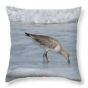 Snacking Sandpiper Throw Pillow