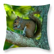 Snacking Squirrel Throw Pillow