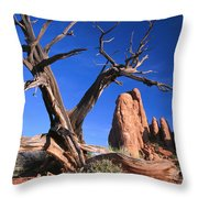 Snag At  Fiery Furnace Labyrinth Arches Throw Pillow