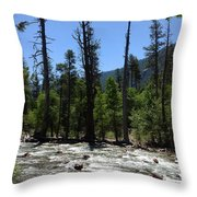 Snags In The Stream Throw Pillow