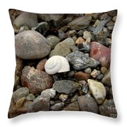 Snail Among The Rocks Throw Pillow