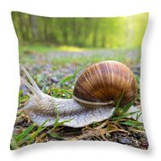 Snail Creeping Over A Forest Path Throw Pillow