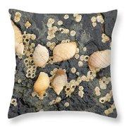Snail Family Vacation Throw Pillow