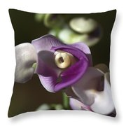 Snail Flower In The Spot Light Throw Pillow