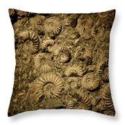 Snail Fossil Throw Pillow