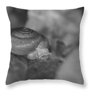 Snail In Black And White Throw Pillow