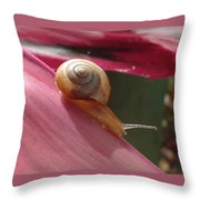 Snail In Motion Throw Pillow