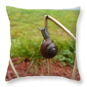 Snail Out On A Limb  Throw Pillow