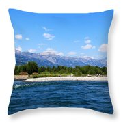 Snake And Tetons Throw Pillow