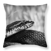 Snake In Black And White Throw Pillow