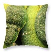 Snake In Green Dress Throw Pillow