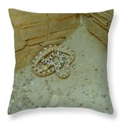 Snake In Ruins Throw Pillow