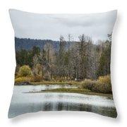 Snake River Near Cattleman's Bridge Site -  Grand Tetons Throw Pillow