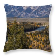 Snake River Overlook One Throw Pillow
