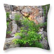 Snake Rock Throw Pillow