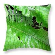 Snake Skin Plant Throw Pillow