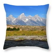 Snake Views Throw Pillow