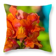 Snapdragon Flower Blurred Background Throw Pillow