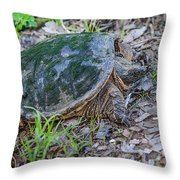 Snapper Eggs Throw Pillow
