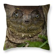 Snapper Throw Pillow