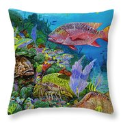 Snapper Reef Re0028 Throw Pillow