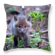 Sneaking Throw Pillow