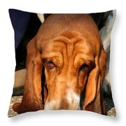 Sniffer Throw Pillow