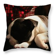 Snoozer Throw Pillow