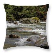 Snoqualmie Rapids Washington Throw Pillow