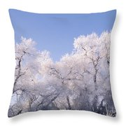 Snow And Ice Blanket Cottonwood Trees Throw Pillow