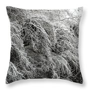 Snow And Ice Covered Trees At The Base Of Niagara Falls Throw Pillow