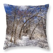Snow Arches Throw Pillow