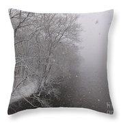Snow At Bulls Island - 12 Throw Pillow