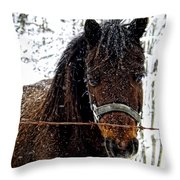 Snow Beauty Throw Pillow