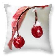 Snow Berries Throw Pillow by Aaron Aldrich