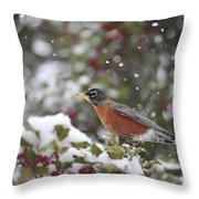 Snow Bird Throw Pillow