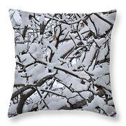 Snow Branches 2-1-15 Throw Pillow