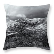 Snow Capped 45 Throw Pillow