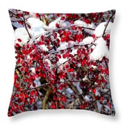 Snow Capped Berries Throw Pillow