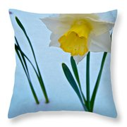 Snow-capped Daffodil On May 21 Near Des Chutes National Forest-or  Throw Pillow
