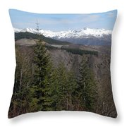 Snow Capped View Throw Pillow