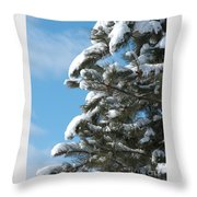 Snow-clad Pine Throw Pillow