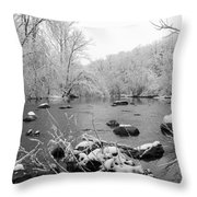 Snow Covered Darby  Throw Pillow