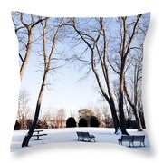 Snow Covered Green Throw Pillow