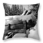 Snow Covered History Throw Pillow