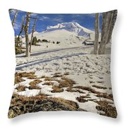Snow Covered Mount Hood In Oregon Throw Pillow