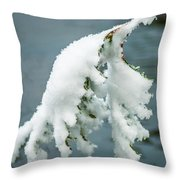 Snow Covered Pine Tree Branch Throw Pillow