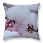 Snow Covered Pink Cherry Blossoms Throw Pillow