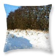 Snow Covered Riverbed Throw Pillow