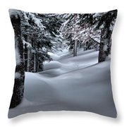 Snow Covered Trail Throw Pillow